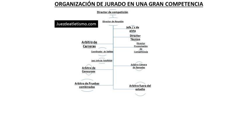 Organigrama jurado.pptx